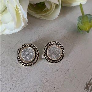 NWT Beautiful Silver Tone Clio Earrings